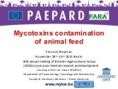 Mycotoxins contamination of animal feed