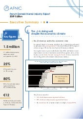 2009 French Domain name Industry Re...