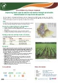 Africa RISING in the Ethiopian Highlands: Improving food security and farm incomes through sustainable intensification of crop-livestock systems