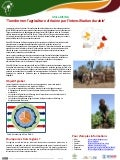 Africa RISING: 'Transformer l'agriculture africaine par l'intensification durable'