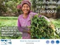 Groundwater for irrigation in Cambodia