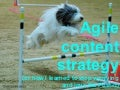 Agile content strategy - round 2