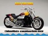 Agile customs