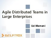 Agile distributed Teams in Large Enterprises