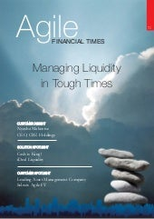 Agile Financial Times Apr09