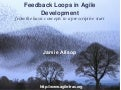 Feedback Loops in Agile Development