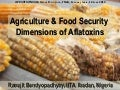 Agriculture and food security dimentions of aflatoxin