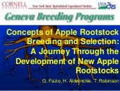 Apple Rootstock Selection