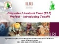 Ethiopian Livestock Feed (ELF) Project: Introducing Techfit