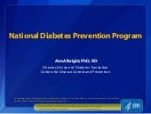 The National Diabetes Prevention Program Updates 2014