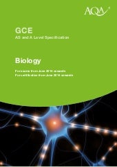 A level biology specification