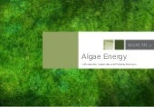 Algae.Tec Advanced Biofuels: Invest...