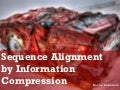 Sequence Alignment by Information Compression