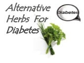 Alternative herbs to control blood ...