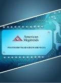 American megatrends platform validation services