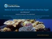 Coral diseases, coral bleaching and...