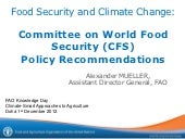 Committee on World Food Security (C...