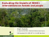 Evaluating the impacts of REDD+ interventions on forests and people