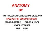 Anatomy nazeen batch cranial nerves
