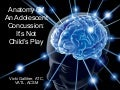 Anatomy Of An Adolescent Concussion