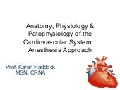 Anatomy, physiology & patophysiolog...