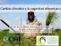 Climate change and Food Security in Latin America