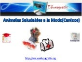 Cursos Gratis de Animales Saludable...