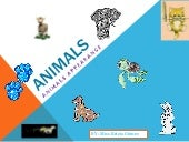 Animals ppt