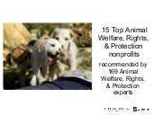 Top Animal Welfare, Rights & Protec...