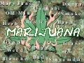 Anthropology Of Marijuana Use