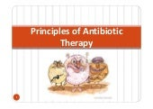 Antibiotic principles
