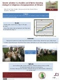 Genetic selection is a feasible and effective breeding strategy for indigenous sheep populations in Ethiopia