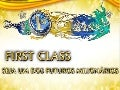 Apresentacao first class Internationalfirstclass  ID  SERGIOCJ