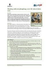 April 2010 DFID CIMMYT Case Study Z...