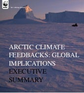 Arctic Climate Feedbacks: Global Im...