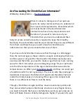 Are You Looking For Chinichilla Care Information