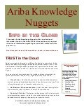 Ariba Knowledge Nuggets - Information in the Cloud