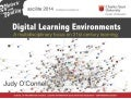 Digital Learning Environments: A multidisciplinary focus on 21st century learning