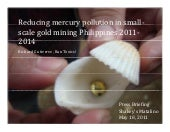 Reducing Mercury Pollution in Small...