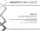 REACH Registration 2013 - Assent Co...