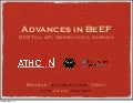 Advances in BeEF - AthCon2012