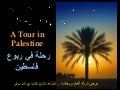A Tour in Palestine
