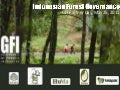 GFI: Indonesia Forest Governance (Attachment 1)