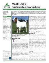 Meat Goats: Sustainable Production