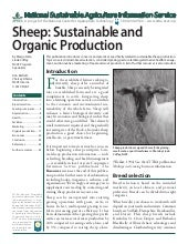 Sheep: Sustainable and Organic Prod...