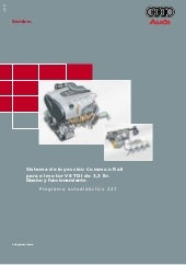 Audi common rail motor v8 tdi 3.3 ltr
