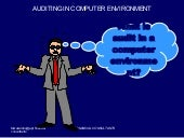 Auditing In Computer Environment Pr...