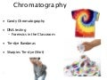 CHROMATOGRAPHY science-Hidalgo