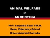 Animal Welfare In Argentina