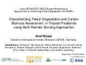 Characterizing Forest Degradation and Carbon Biomass Assessment in Tropical Peatlands using Multi Remote Sensing Approaches
